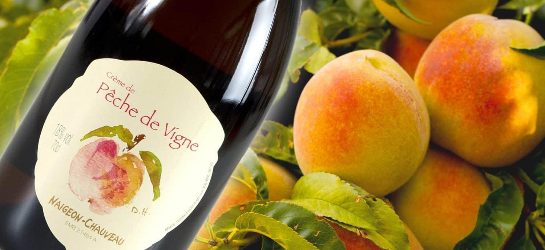 weinhandel zürich Weinhandlung Donat Gut Peche de vigne